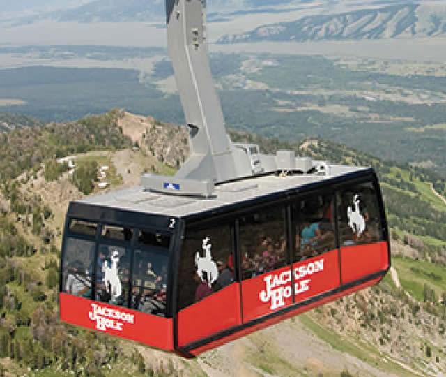 Jackson Hole Aerial Tram Combo Trip